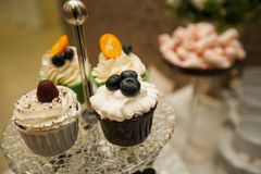 Vanilla cupcakes with cream icing, decorated with berries, close-up on a glass dish on the wedding table. The concept of food, royalty free stock image