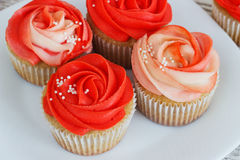 Vanilla cupcakes decorated with a red rose from a cream on a white background.  Royalty Free Stock Images