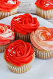 Vanilla cupcakes decorated with a red rose from a cream on a white background.  Royalty Free Stock Photos