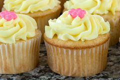 Vanilla Cupcakes with Lemon Icing Royalty Free Stock Photography