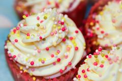 Vanilla cupcakes. Mini cupcakes with sprinkles and frosting swirls Royalty Free Stock Image