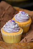 Vanilla cupcakes with spiral yam butter cream topping. Placed on a wooden top royalty free stock images