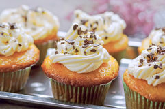 Vanilla cupcakes with whipped cream Royalty Free Stock Image