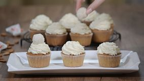 Vanilla cupcakes with white cream.  stock footage