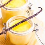 Vanilla custard Stock Image