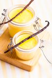 Vanilla custard Royalty Free Stock Photo
