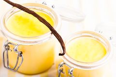 Vanilla custard Stock Photography
