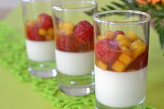 Vanilla dessert with fruit. Vanilla cream dessert with mango and raspberries in sirup Stock Image