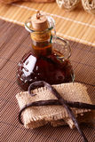 Vanilla extract. With beans on natural background stock images