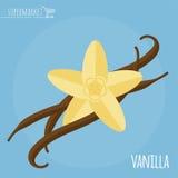 Vanilla flat design vector icon Stock Photos