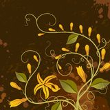 Vanilla. Floral background. Stock Photo