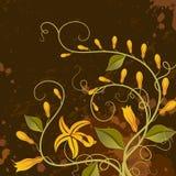 Vanilla. Floral background. stock illustration