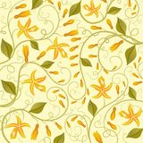 Vanilla. Floral background. Stock Photography
