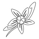 Vanilla flower icon, outline style Royalty Free Stock Image