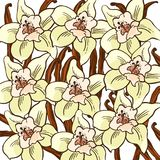 Vanilla flower pattern Royalty Free Stock Images