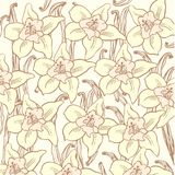 Vanilla flower pattern Royalty Free Stock Image
