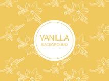 Vanilla flower sketch on light-yellow background rectangular composition Stock Photography