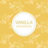 Vanilla flower sketch on light-yellow background square composition Royalty Free Stock Photo