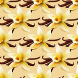 Vanilla flower vector background. Vanilla flower vector seamless background, sweet wrapping paper pattern for bakery or Royalty Free Stock Photo