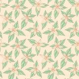 Vanilla flowers pattern pattern. Seamless pattern with vanilla flowers, vector background Stock Image