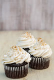 Vanilla Frosted Chocolate Cupcakes Stock Images