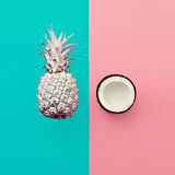 Vanilla fruit design. Mix pineapple and coconut Stock Photo