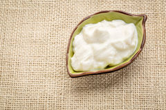 Vanilla Greek yogurt bowl Royalty Free Stock Photo