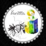 Vanilla Stock Images