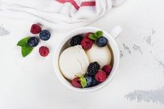 Vanilla ice cream with berries Royalty Free Stock Photos