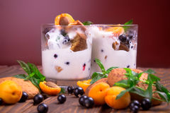Vanilla ice cream with berries and mint Stock Images