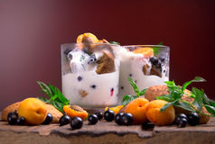 Vanilla ice cream with berries and mint Royalty Free Stock Photos