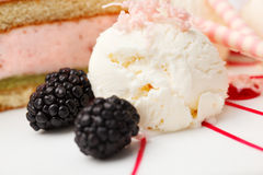 Vanilla ice cream with blackberries Stock Photos