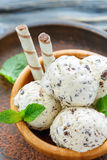 Vanilla ice cream with chocolate chips and mint leaves. Royalty Free Stock Photo