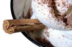 Vanilla ice cream with chocolate and cinnamon Stock Images