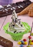 Vanilla ice cream cup Royalty Free Stock Photos