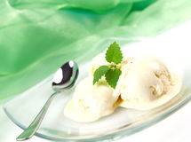 Vanilla ice cream with mint Stock Photos