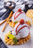 Vanilla Ice Cream with Mint and waffles. Homemade Organic product. On the wooden table. Stock Photography