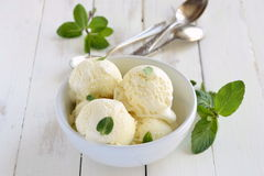 Vanilla ice cream with mint Stock Images