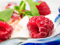 Vanilla ice cream with raspberries Royalty Free Stock Image