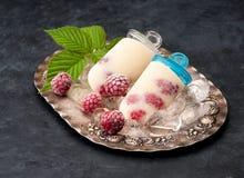 Vanilla ice cream with raspberries on vintage plate Stock Photos