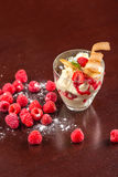 Vanilla ice cream. With raspberry on the bar Royalty Free Stock Photos