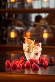 Vanilla ice cream. With raspberry on the bar Stock Photography