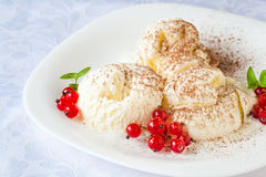 Vanilla ice cream with red currants and cocoa Royalty Free Stock Image