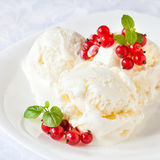 Vanilla ice cream with red currants Stock Images