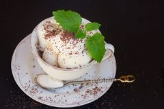 Vanilla ice cream Royalty Free Stock Image