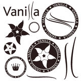 Vanilla. Isolated objects on white background. Vector illustration (EPS 10 Royalty Free Stock Images