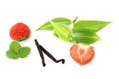 Vanilla leaves with strawberries Royalty Free Stock Photography