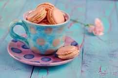 Vanilla macaroon in colorful cup Royalty Free Stock Image