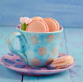 Vanilla macaroon in colorful cup Stock Photography