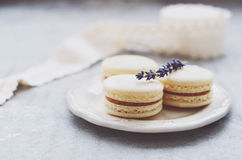 Vanilla macaroons with lavender and caramel filling Stock Photos